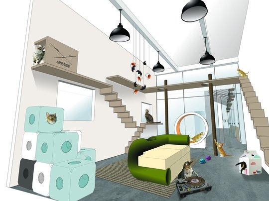 aristide hotel a macskasz ll nem harap a spen t. Black Bedroom Furniture Sets. Home Design Ideas